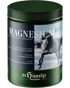 St. Hippolyt Magnesium B12 1kg