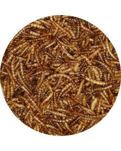 Mehlwürmer getrocknet 1kg